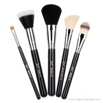 Sigma face makeup brush kit